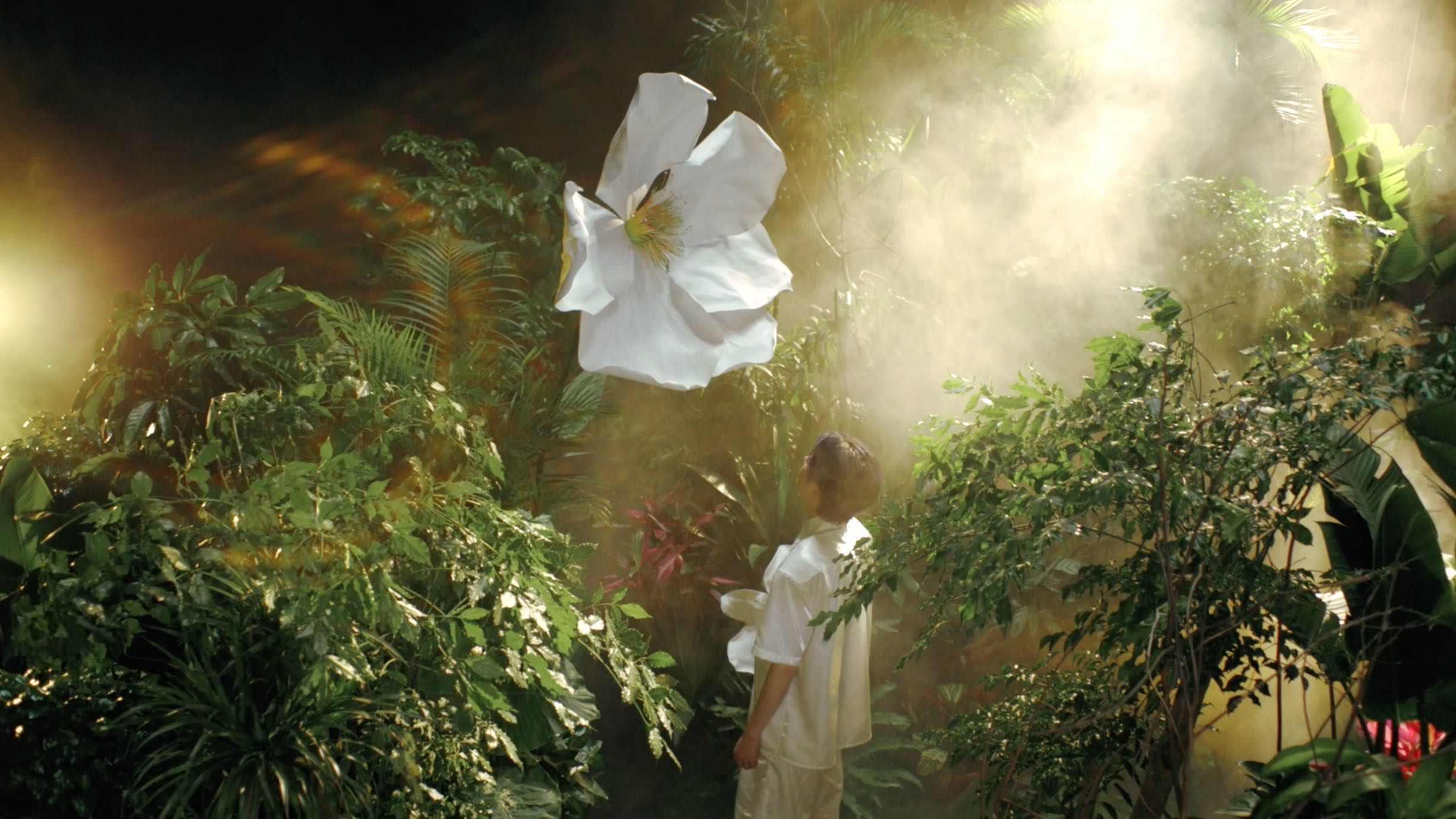 祖玛珑 × 奥斯卡 | 花开限量系列新香「仙谷绿」