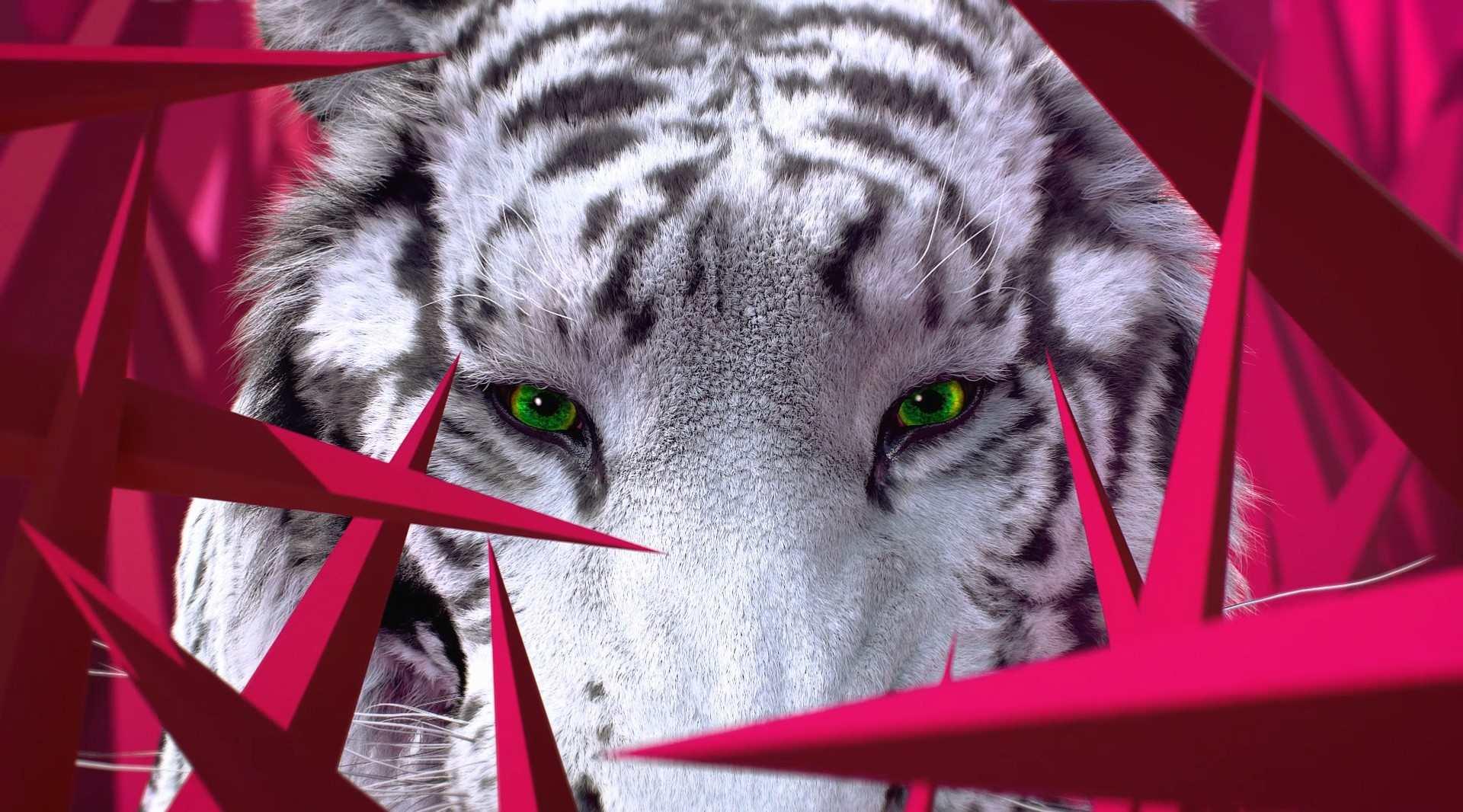 Dr.Jart : CICAPAIR™ TIGER GRASS SERUM