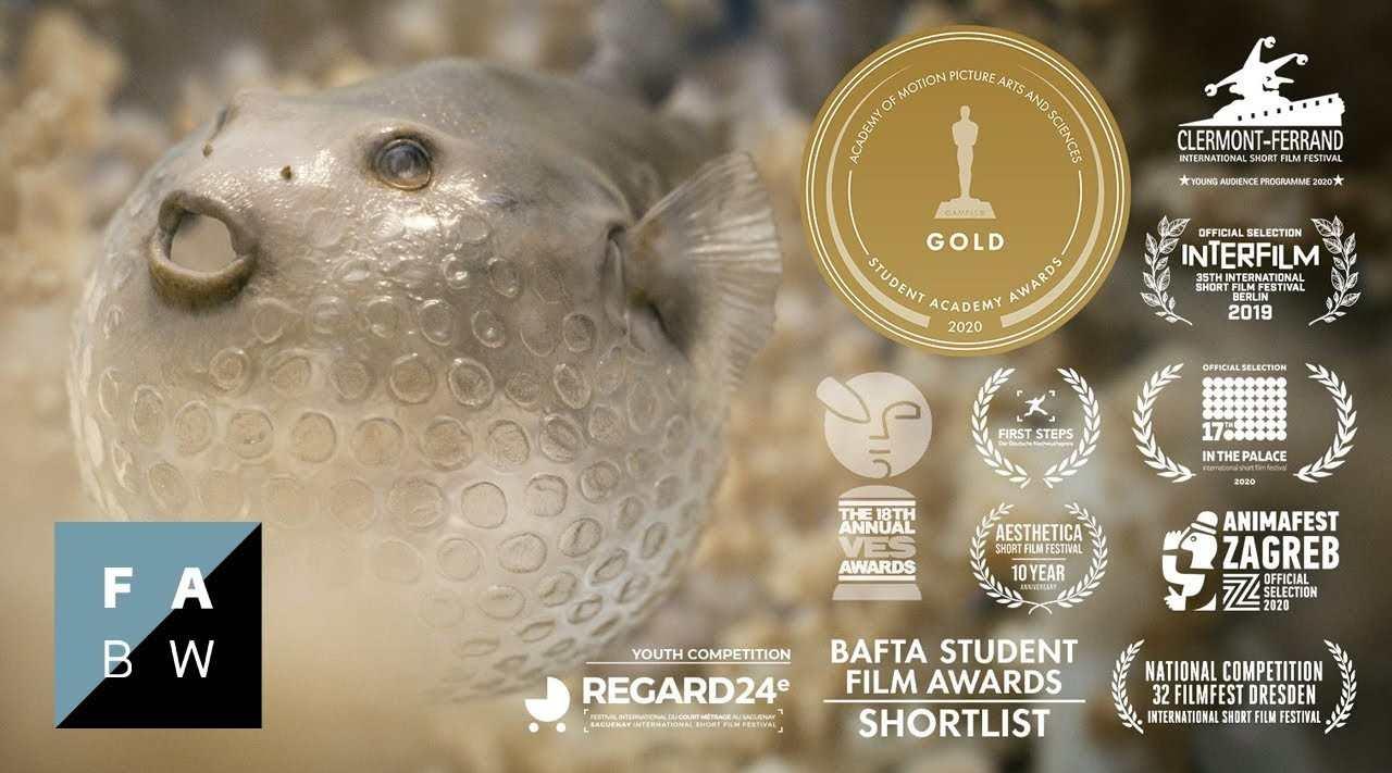 学生奥斯卡金奖公益动画《塑料之美》